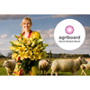 Floriade in 2022 naar Noordwest-Holland